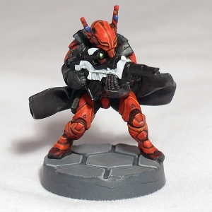 Aquila Guard with Multi-rifle - click to enlarge