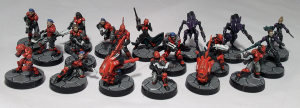 Neoterran Capitaline Army - click to enlarge