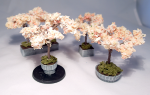 Cherry Blossoms - click to enlarge