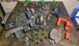 Natural terrain board - click to enlarge